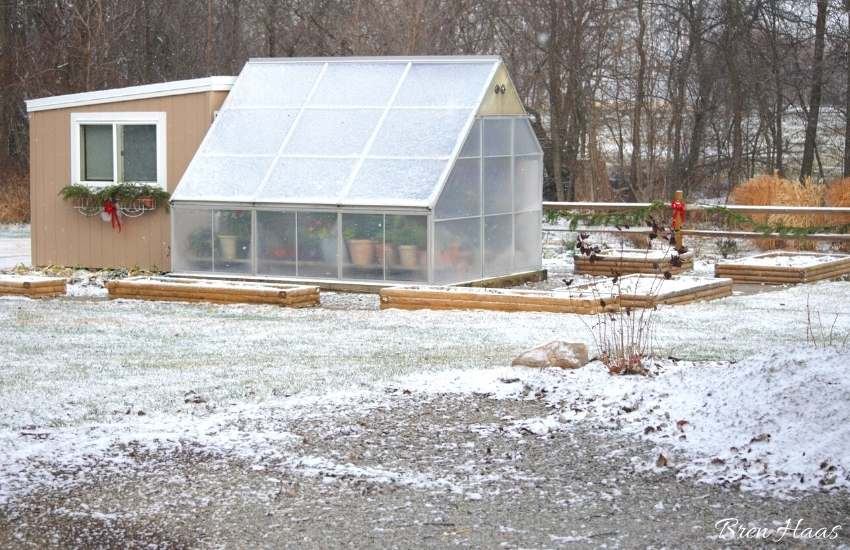 greenhouse in the landscape