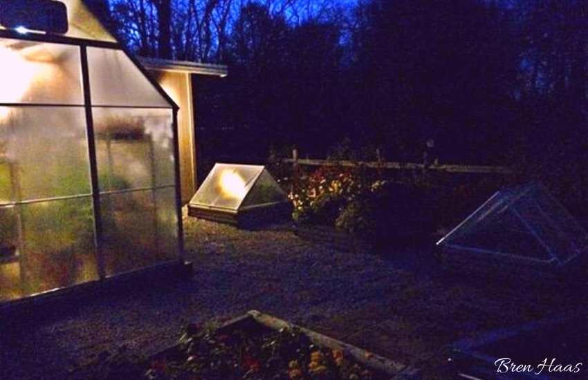 greenhouse and cold frame in the evening