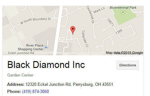 Black Diamond Inc