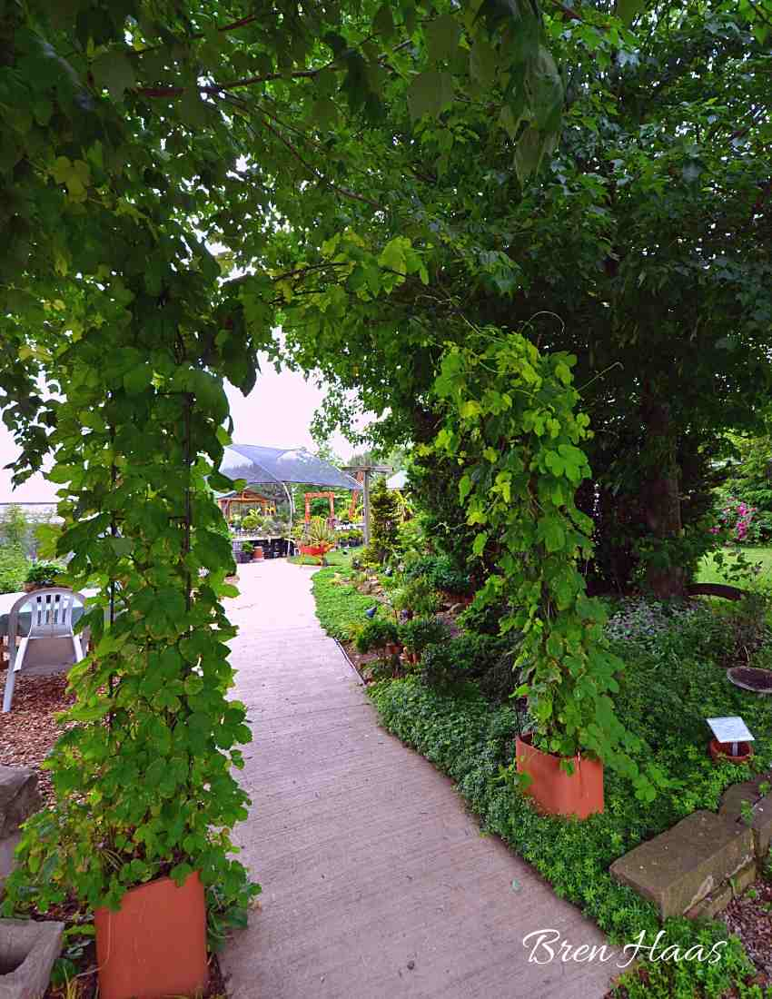 Entry to the Garden Center