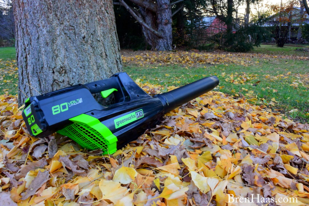 Powerful Gas Alternative Leaf Blower Review