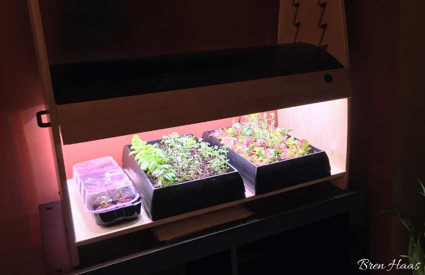 led habitat in my dining room
