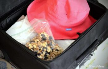 travel suitcase with treats and hat