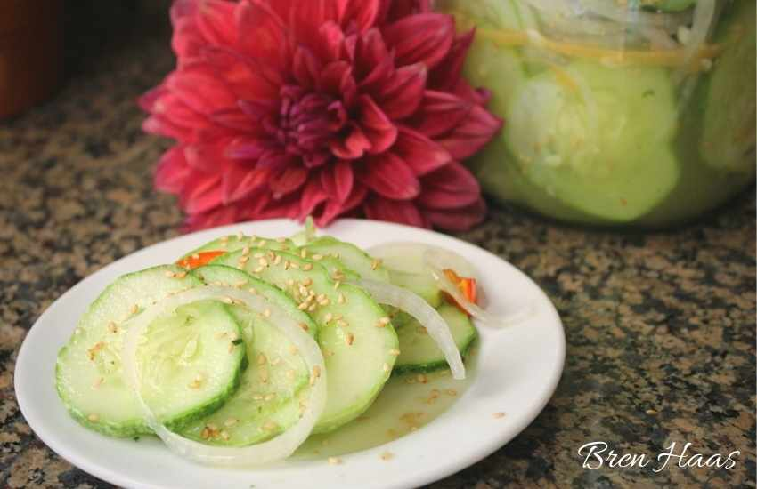 pickle plate to enjoy