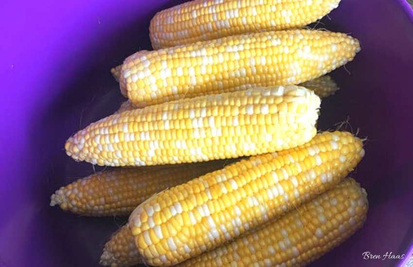 fresh corn from the market