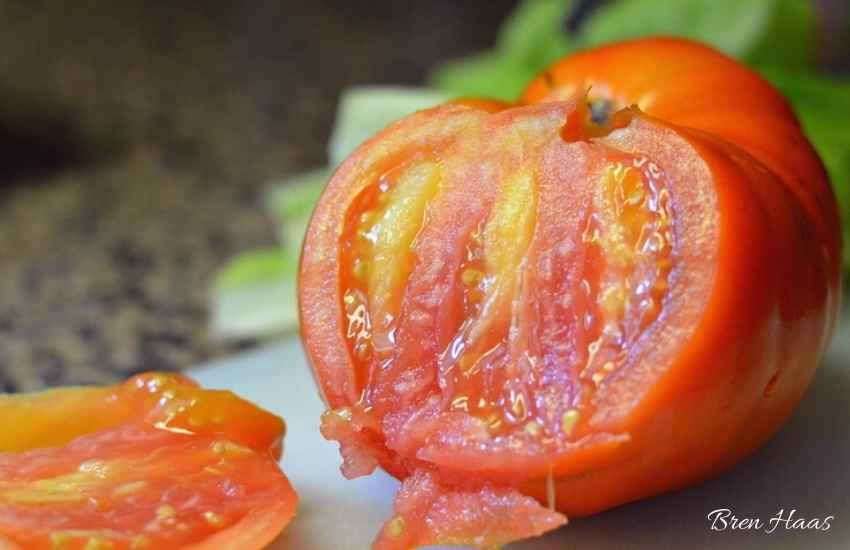 Sliced Beefsteak Tomato
