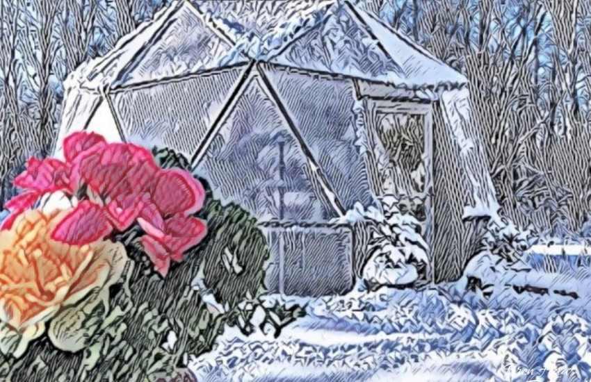 dome art in winter