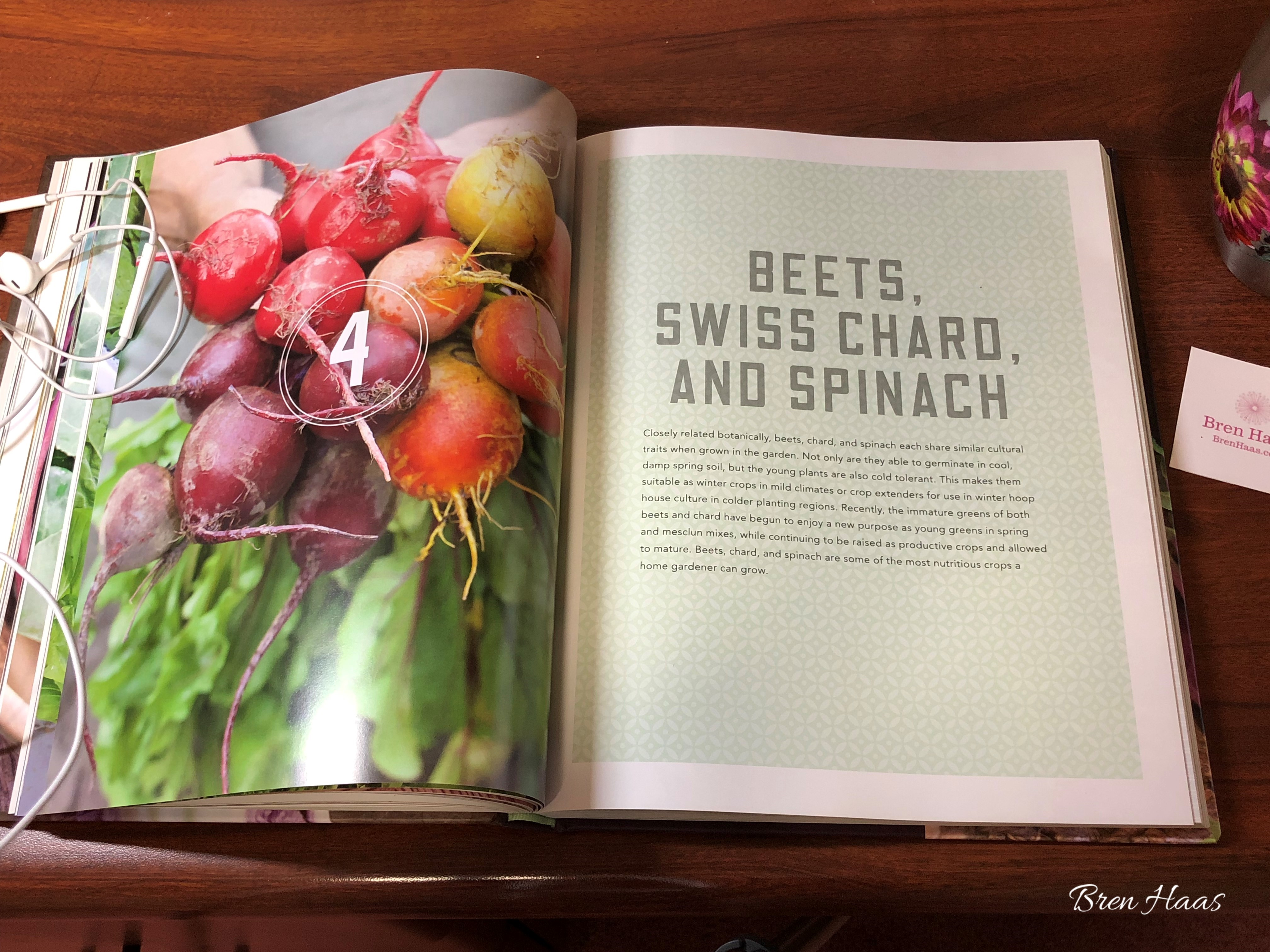 coolcrops including beets