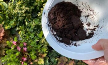 Landscape Gardening with Compost