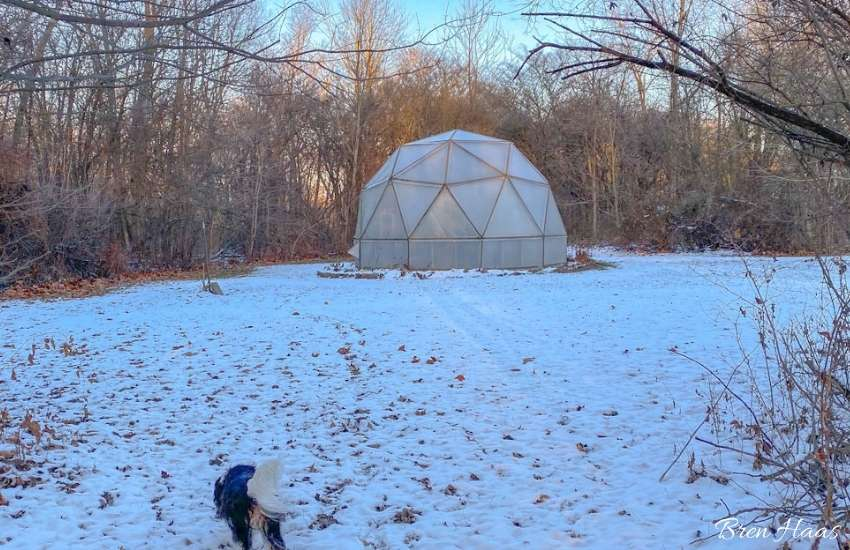 december dome decorating