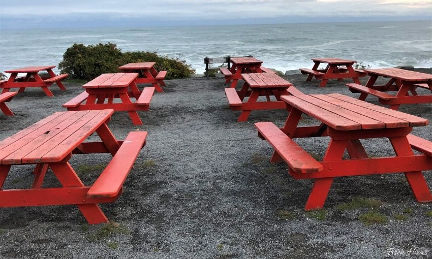 Picnic Tables on the Bay