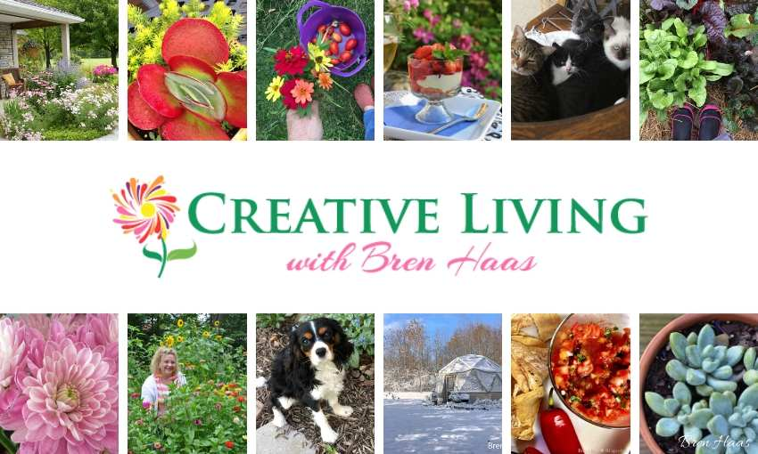 Creative Living with Bren Haas Blog