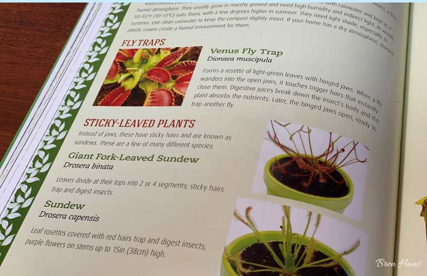 A page from Houseplant Handbook