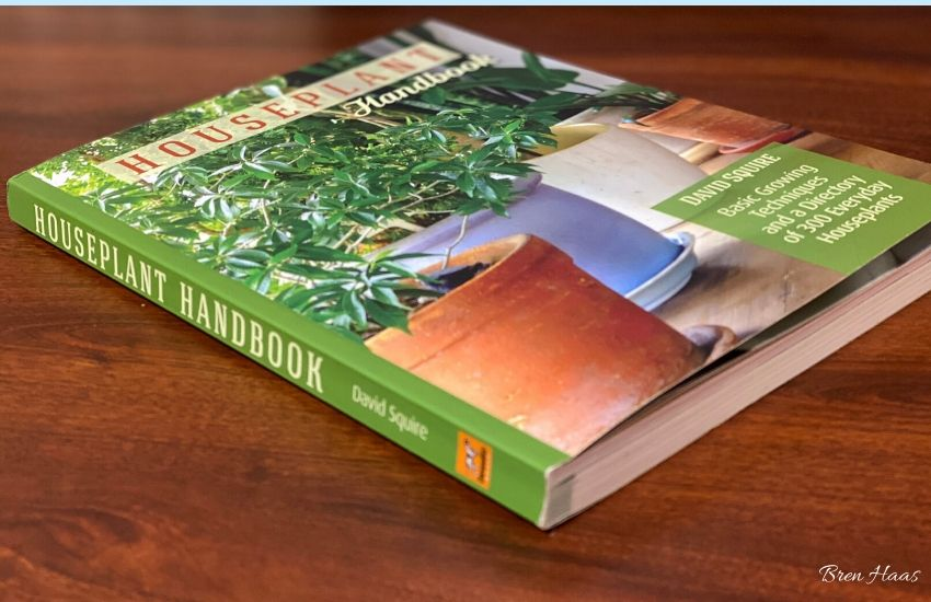 The Houseplant Handbook