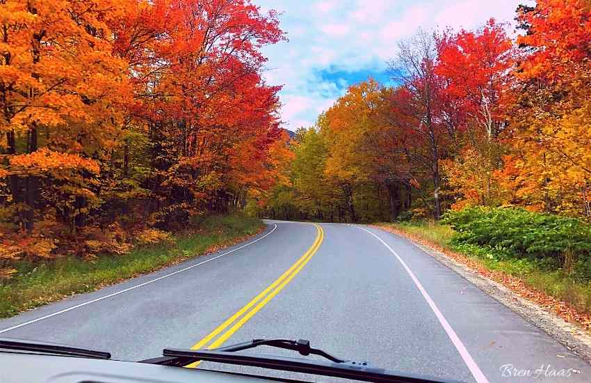 autumn color in the northeast