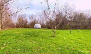 New Green Space in Spring