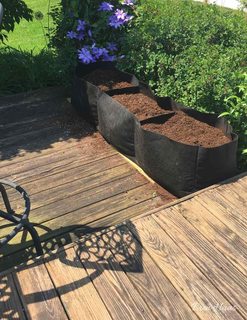 Setting The Raised Bed Garden Up