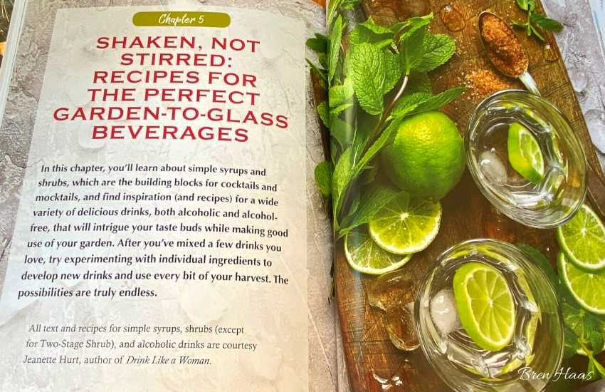 Recipes in Book Review
