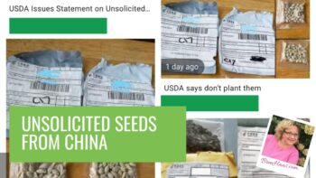 seeds from china video header