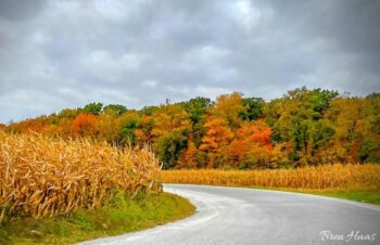 Autumn Drive in Ohio