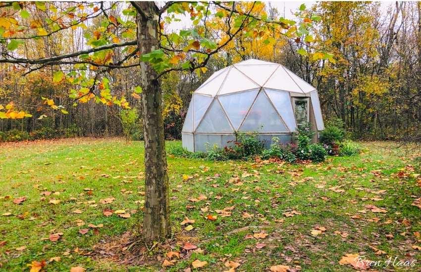 dome in autumn color