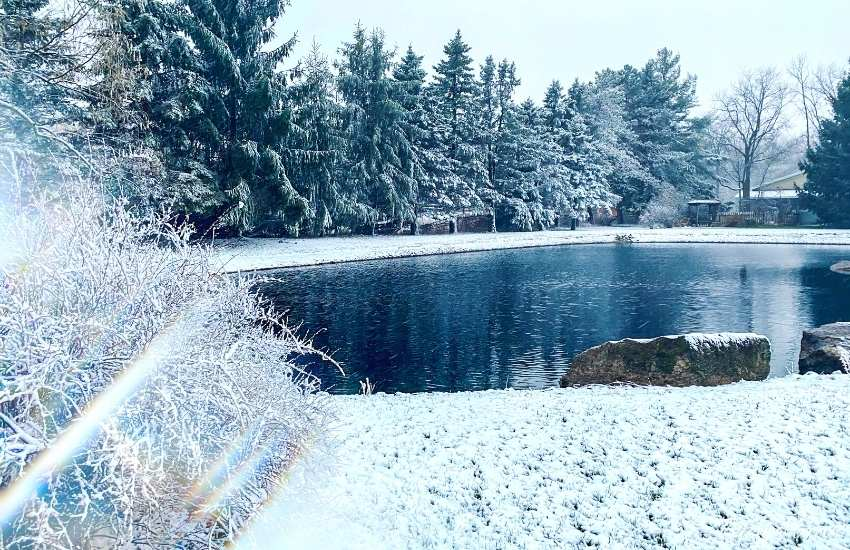 the pond in the snow