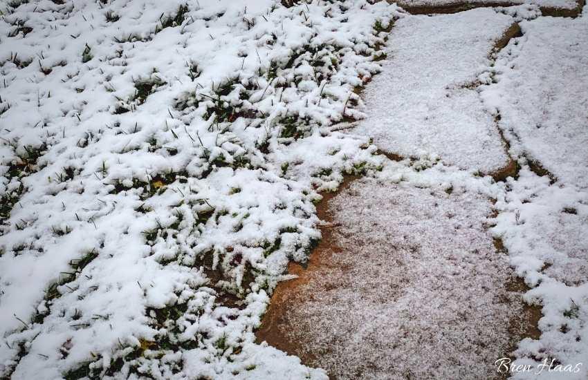 first snow on sidewalk