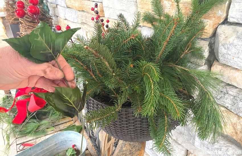 hanging basket DIY for Winter decorations