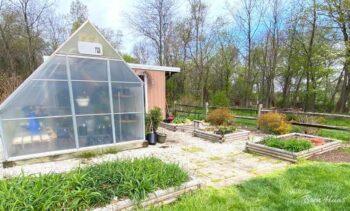 My 10'x12' Greenhouse Update