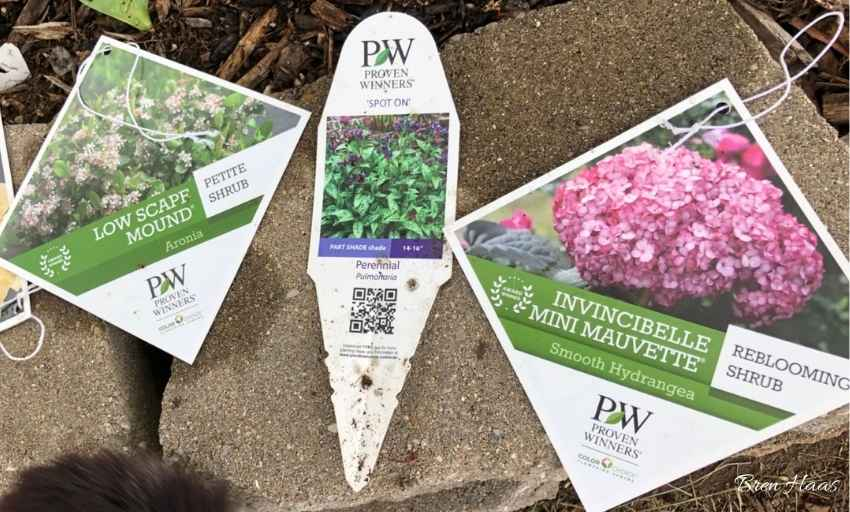 Save Tags To Plants
