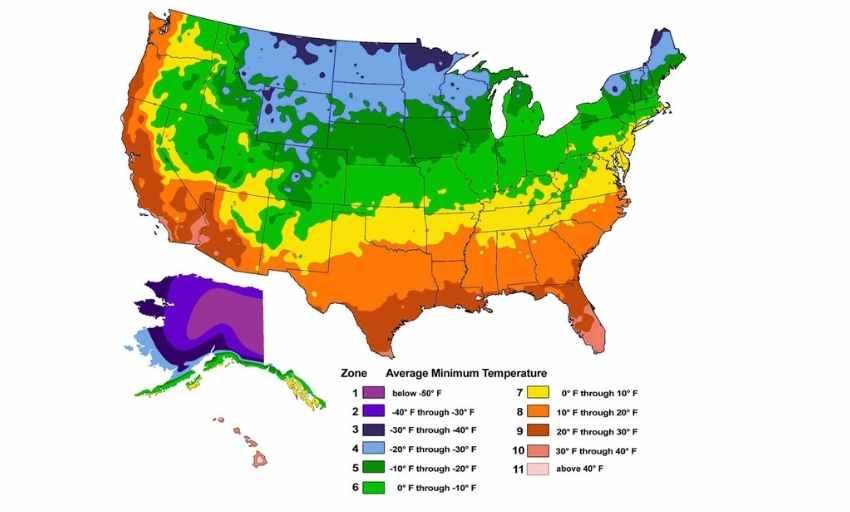 MAP USDA Hardiness Zones