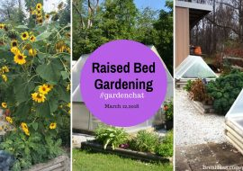 Raised Bed Gardening Tips And Ideas On GardenChat Twitter